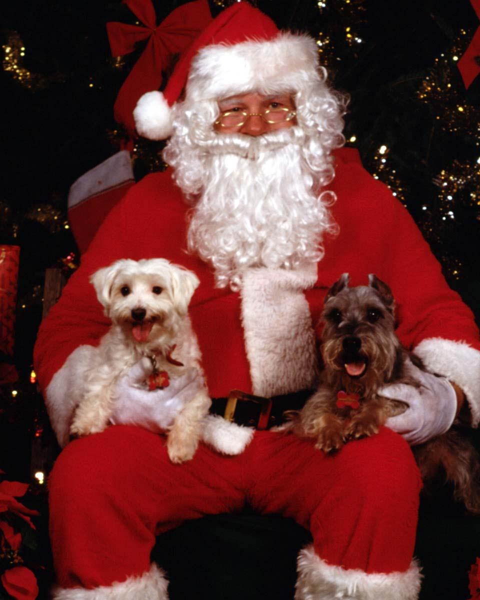 Le Père Noël. dans Images de Noël.